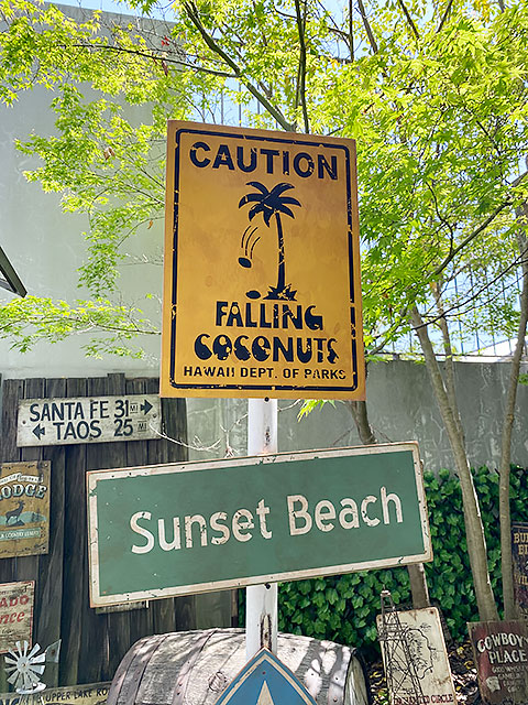 ハワイの道路標識のウッドサイン(ココナッツ落下注意)