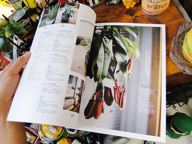 雑誌 別冊ライトニングVol.154 グリーンインテリア