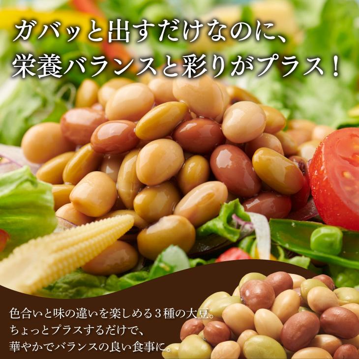 そのままガバッと!3種の国産大豆(パウチ)