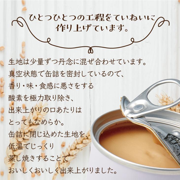 どこでもスイーツ缶 抹茶チーズケーキミニ65g 1缶