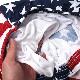 SOFFE(ソフィー)US FLAG MENS FREEDOM SHORT [1020MU][米国旗]