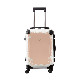 キャラート|アートスーツケース|プロフィトロール スウィート(コーラルピンク)|フレーム4輪|機内持込