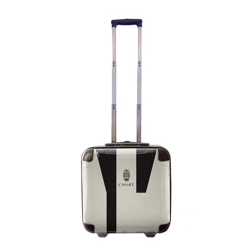 【アウトレット50%OFF】アートスーツケース|ビジネス ナイト(モノトーン)|ジッパー2輪|機内持込|キャラート
