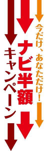 今だけ、あなただけ!ナビ半額キャンペーン のぼり(10枚〜)