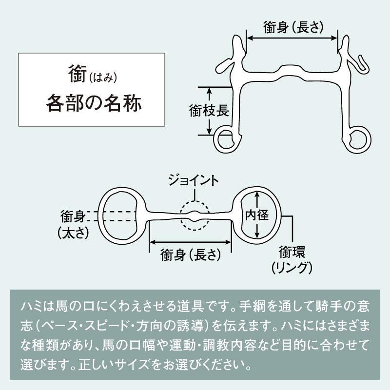 HS ダイナミック RSエッグバット