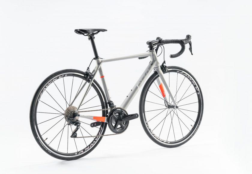 DIZO S6-ego 2021年モデル【フレームのみ】