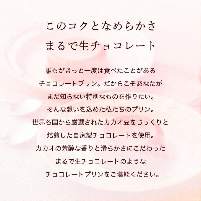 母の日限定スクープオンショコラ4個入 [4/30〜5/16着迄]