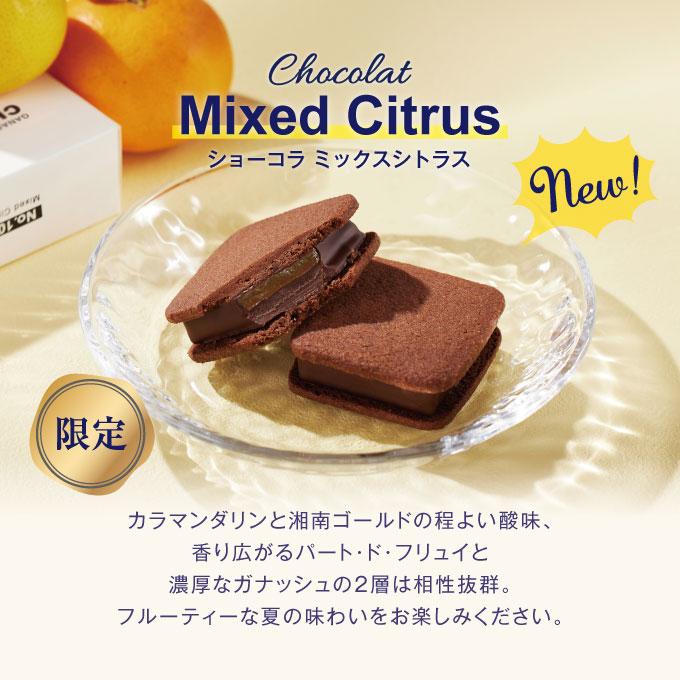 ショーコラ サマーギフト8個入 [8/16着迄]