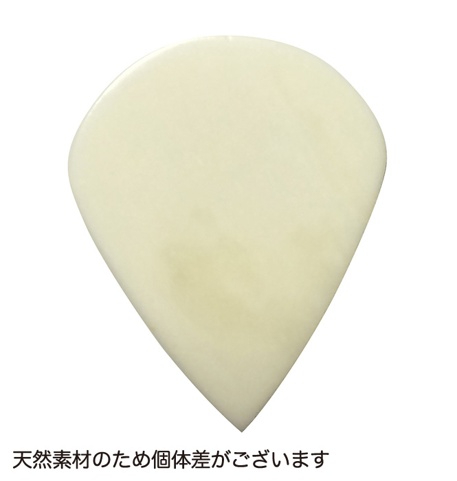 アシュラピックボーン 素材:ボーン(牛骨) 5枚入り ティアドロップ ゲージ:約2.00mm