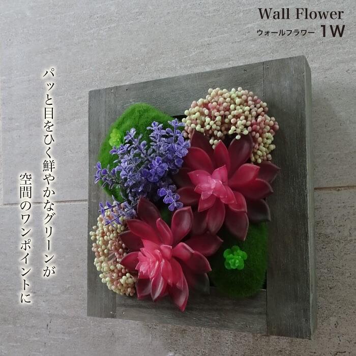 ウォールフラワーシリーズ 1W 多肉植物のボタニカルウォールデコ