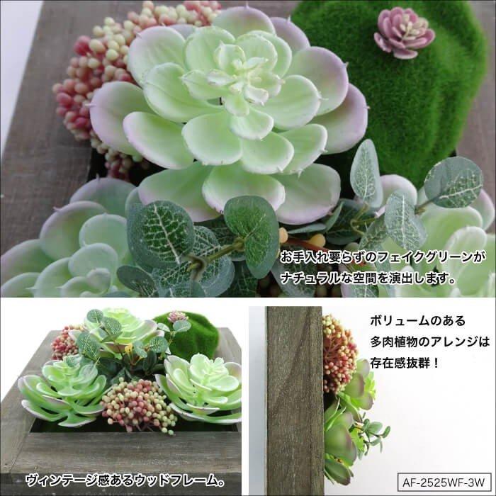 【雑貨】ウォールフラワーシリーズ 3W 多肉植物のボタニカルウォールデコ