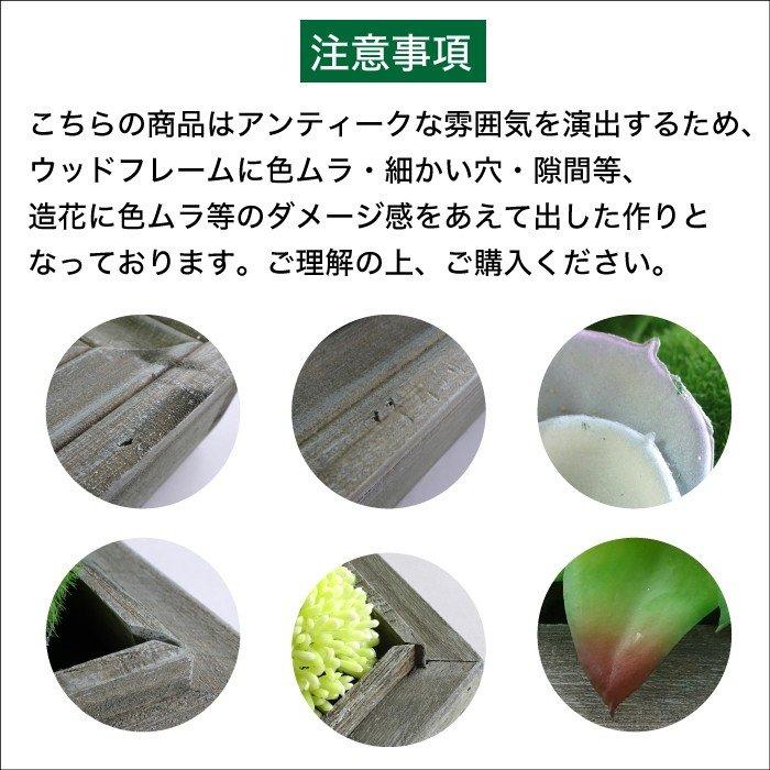 【雑貨】ウォールフラワーシリーズ 6W ボリュームあるグリーンパネル プレゼントに最適です