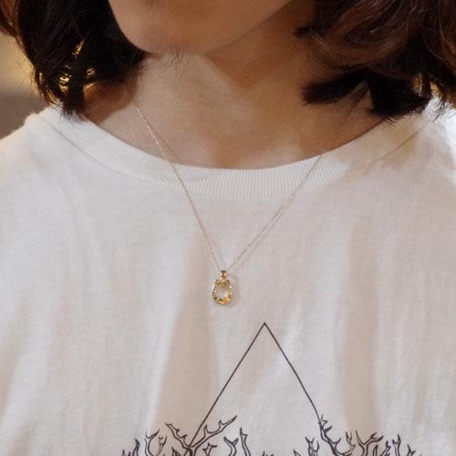Horseshoe Amulet - K10Yellow Gold+K10-2段階アジャストチェーン(細0.25)45cm