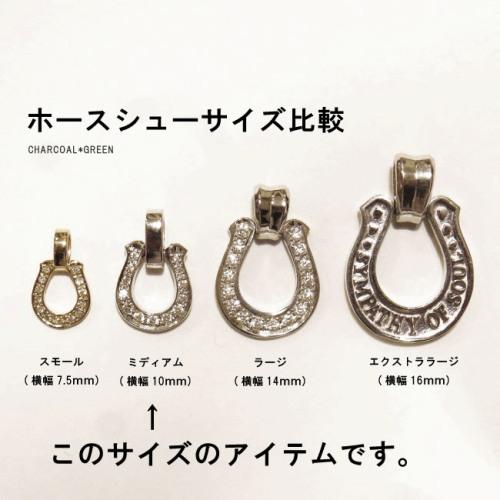 Horseshoe Amulet w/Clear CZ