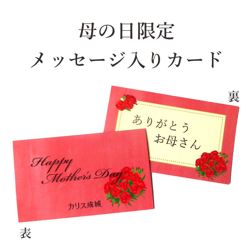 【送料無料】 カリスエコバッグ、ハンドクリームセット