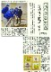 【数量限定・特別販売】加賀の井 純米酒「結〜MUSUBU〜」