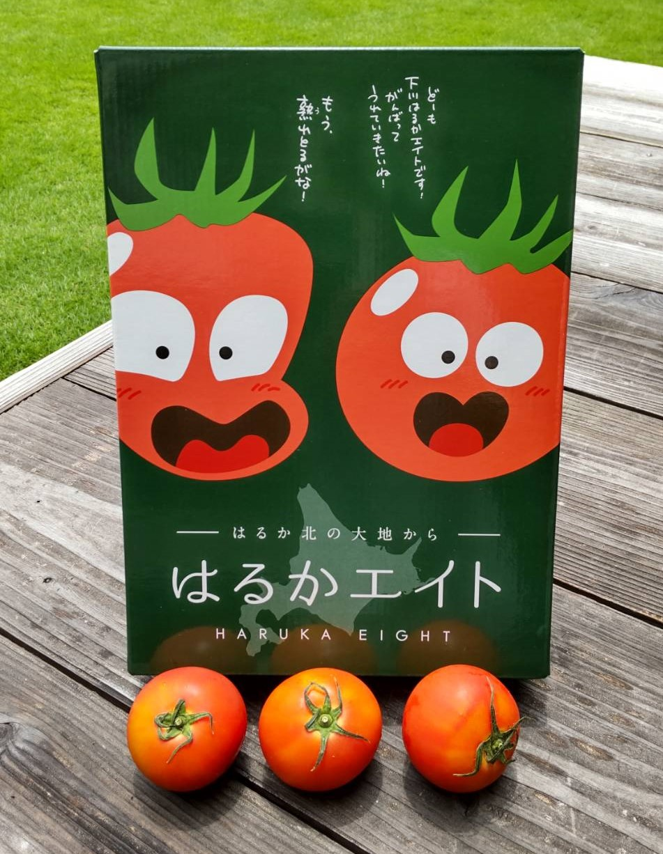 【期間限定】北海道産・糖度8度フルーツトマト「はるかエイト」 ※送料込み