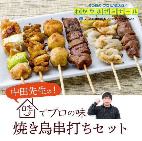 焼き鳥 串打ちキット プロの味をご家庭で 国産鶏肉 焼鳥セット (鶏肉専門店の やきとり 串打ちセット) [送料無料]