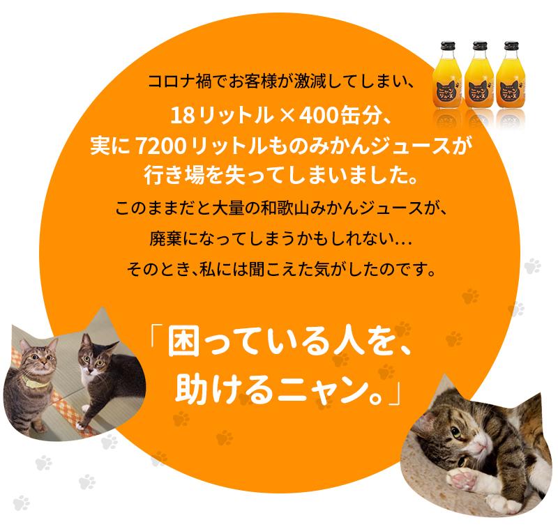 わかやま ニャンジュース 180ml瓶×10本入[送料無料] (和歌山みかん100% ストレート 保護猫活動 オレンジジュース みかんジュース 果汁100%)