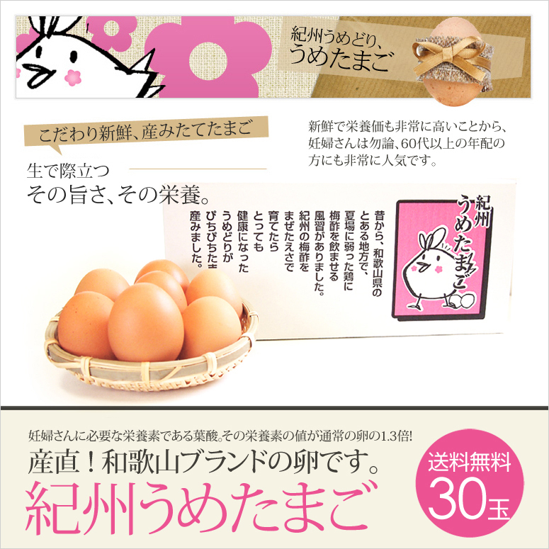 紀州うめたまご 卵 30玉 (27玉+破損保証3玉) (和歌山県産 銘柄鶏 ブランドたまご 卵かけごはん専用) [送料無料]