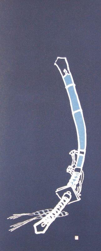 藍-0005 藍染め軸 ≪大刀に菖蒲≫