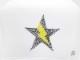 Stsr Thunder swarovski cap White