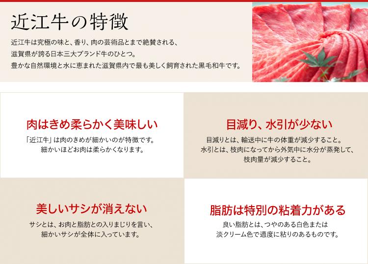 A5等級近江牛姿煮3種詰め合わせセット【計6袋入り】