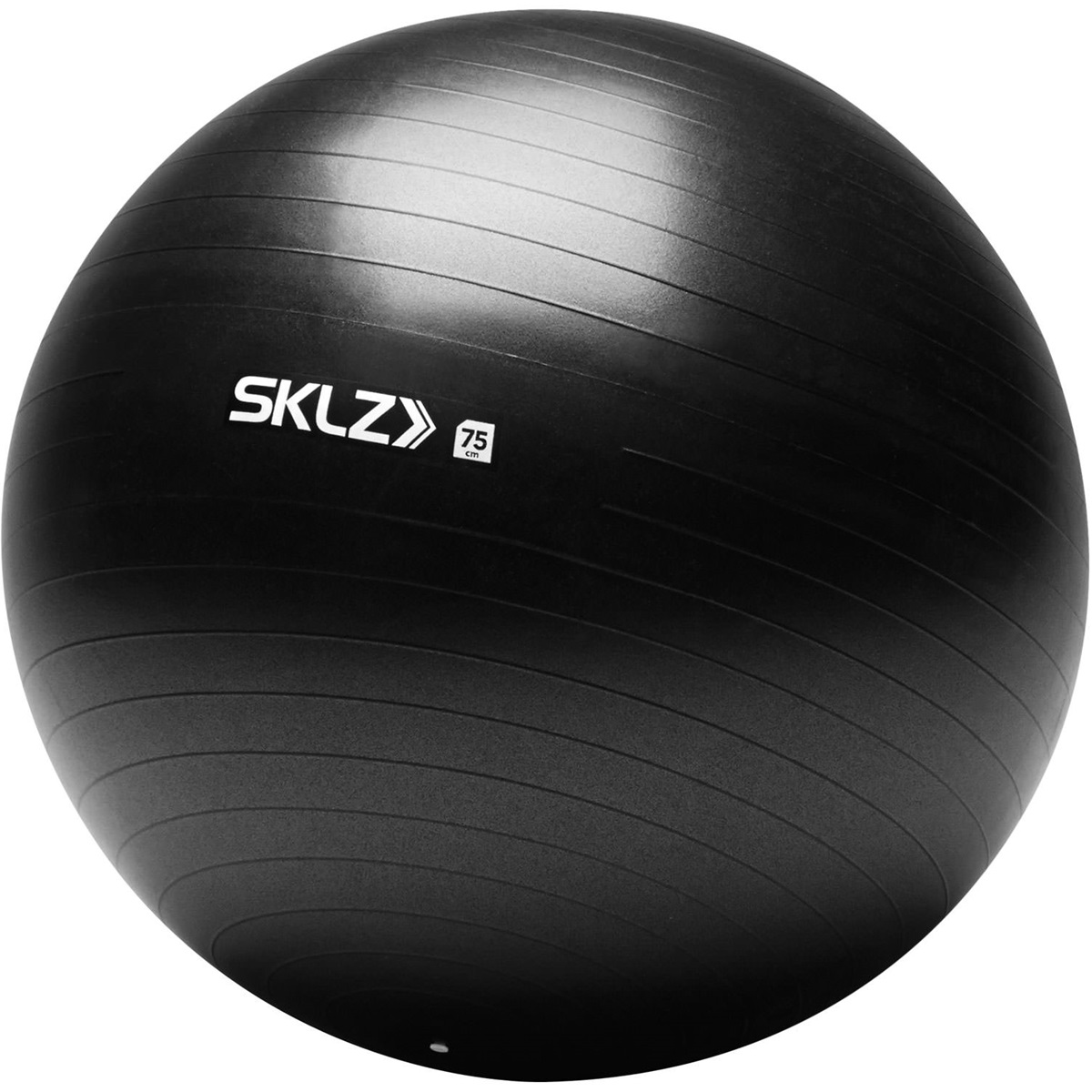 【取寄品】 スキルズ STABILITY BALL 75cm 026965 スキルズ パフォーマンス