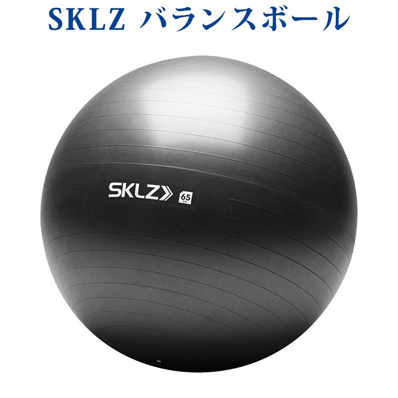 【取寄品】 スキルズ STABILITY BALL 65cm 026958 スキルズ パフォーマンス