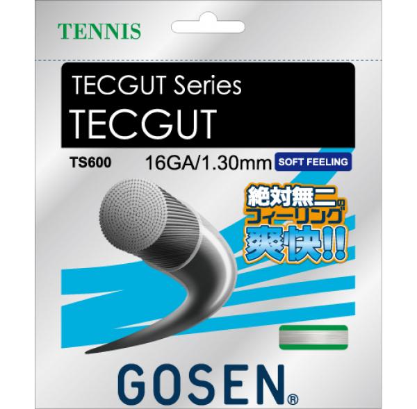 【取寄品】 ゴーセンTECGUT 16 テックガット 16 TS600テニス ストリング 硬式GOSEN ゆうパケット対応
