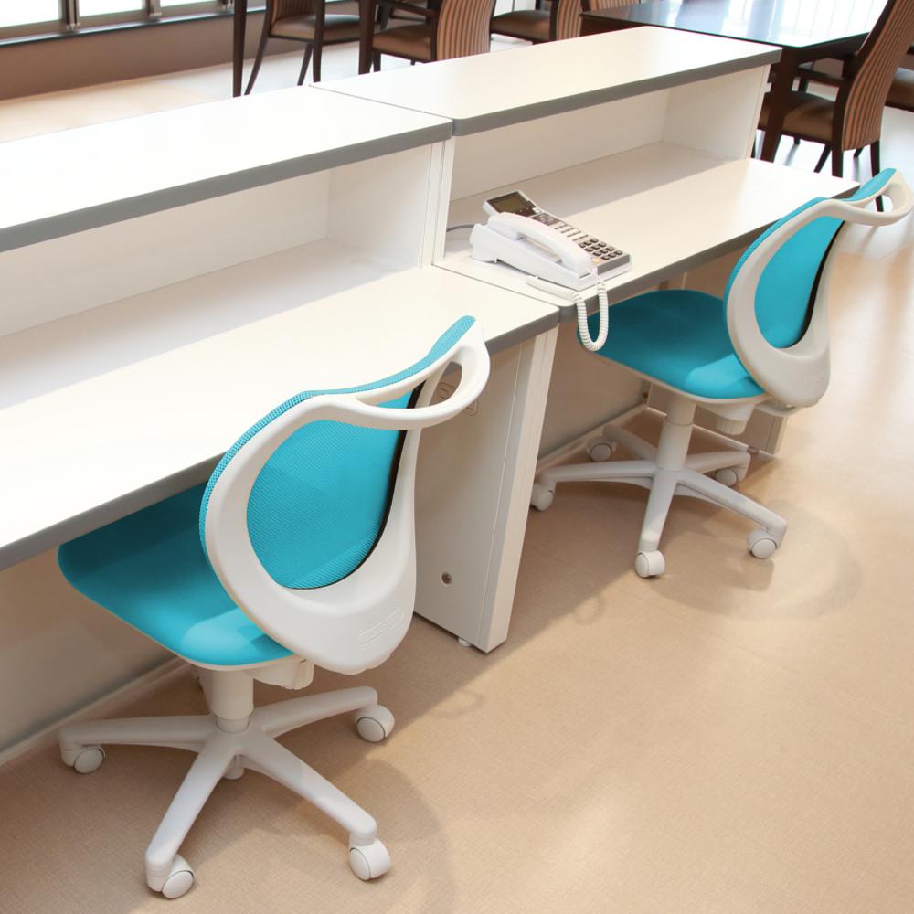 オフィスチェア デスクチェア 事務椅子 肘なし 背メッシュ フローラル | I-FLO-43M0-F