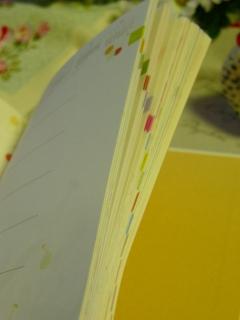 【送料無料!!】 <<2014年 手帳>>いわぶちさちこ アートブックダイアリー B6 週間(ウィークリー)  <オールカラー>【全66作品収録】