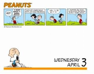 スヌーピー 2013 日めくりカレンダー (Peanuts 2013 Calendar)【30%OFF】【送料無料】【定価:2310円】