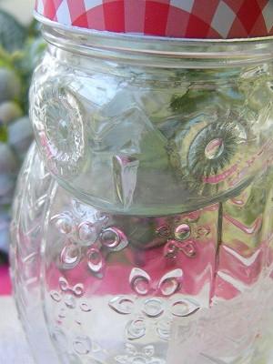 2WAY オウルガラス ジュース&キャニスターボトル