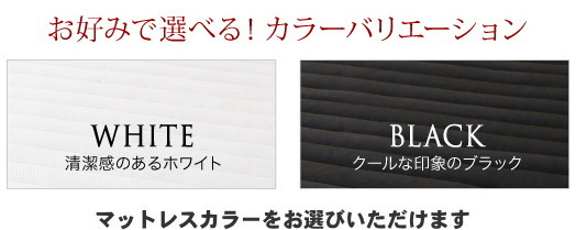 シングル【スタンダードポケットコイルマットレス付き】棚・コンセント付 すのこベッド【Alcester】オルスター