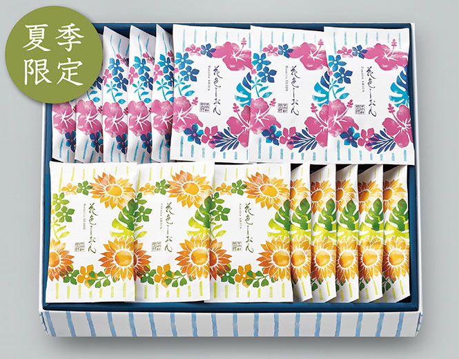 花色しおん 夏 24袋