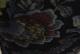 【Clin d'elle(クランデール)】 長袖 パワーネット 裏起毛 フリース ハイネック 20 1805