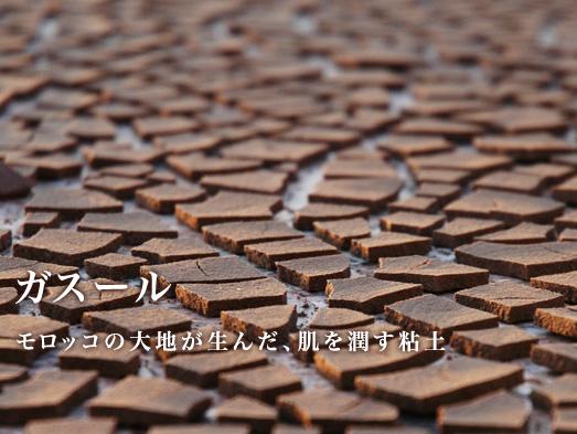 ナイアード ガスール 【固形/500g】