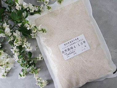 【NEW】自然栽培10年コシヒカリ 白米2kg