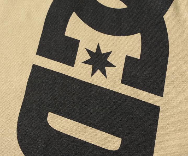 DC SHOES ディーシーシューズ ロンT 長袖 縦ロゴ ビッグシルエット (DLT214021)