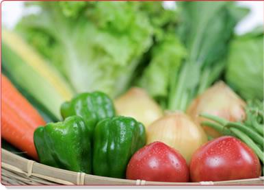 鳥取県産 旬の野菜セット(L)