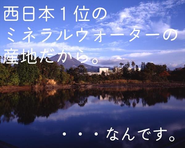 鳥取県産 葉物野菜セット