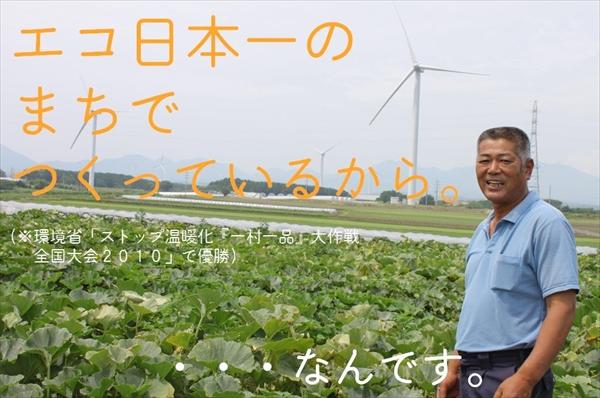 鳥取県産 旬の野菜セット(お試し)