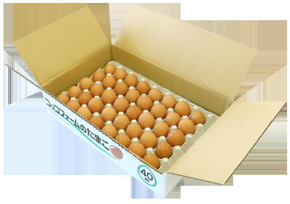 コッコファームのたまご(40個入)【冷蔵】