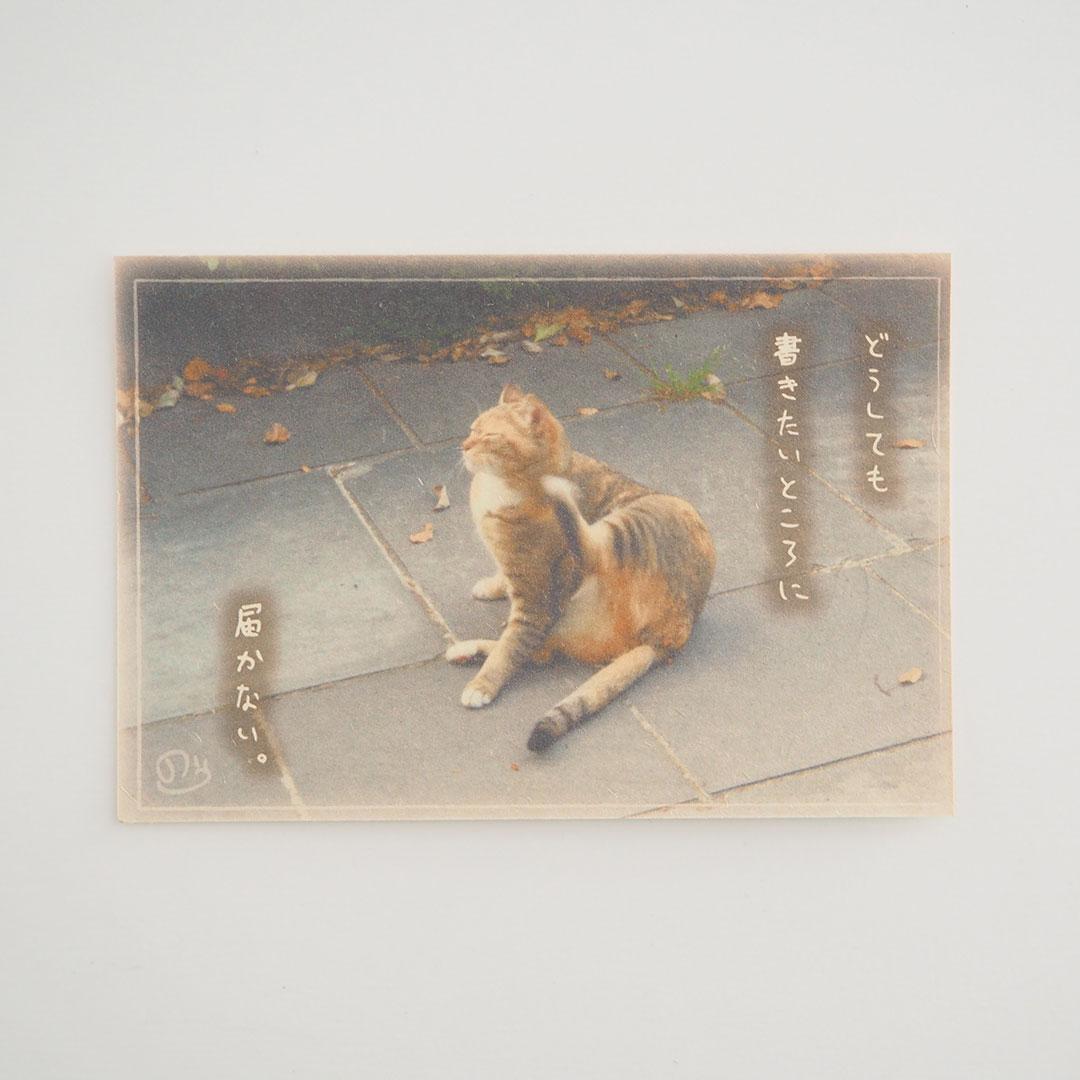 写真と言葉のポストカード/002表現力不足