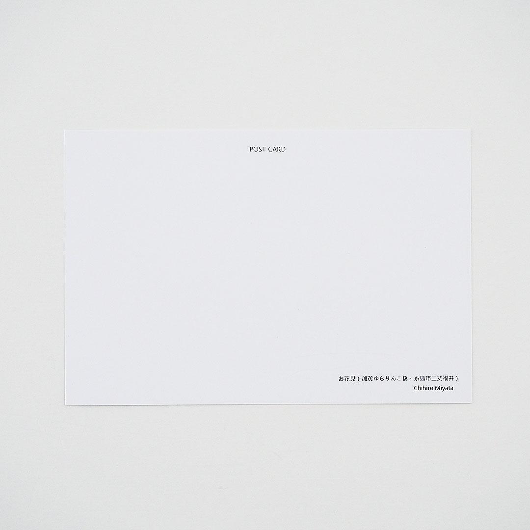 ポストカード/お花見(加茂ゆらりんこ橋)