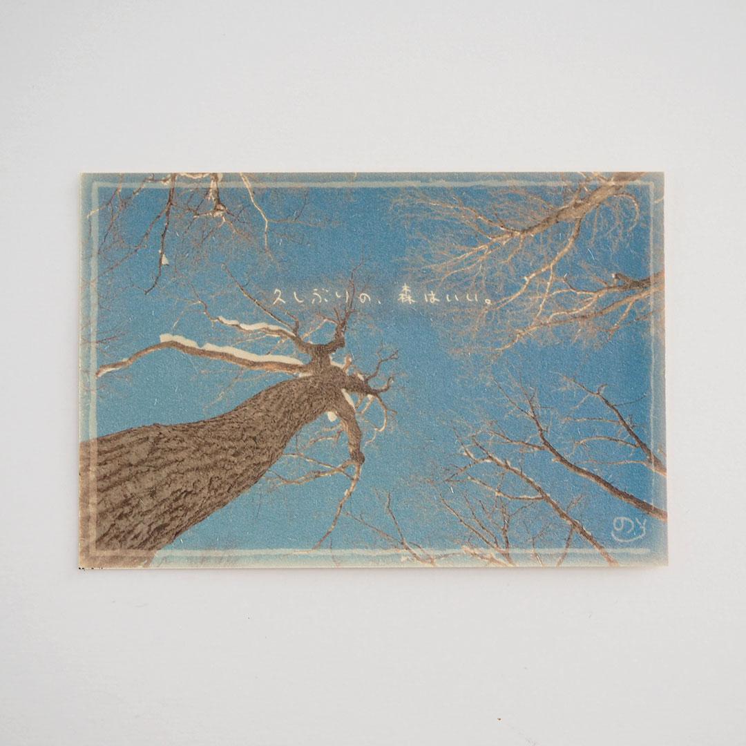 写真と言葉のポストカード/022ごぶさた