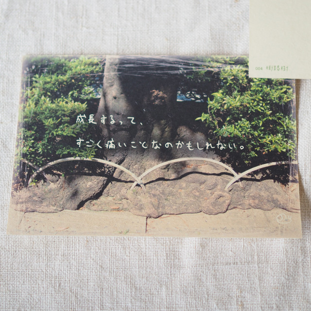 写真と言葉のポストカード/004街路樹