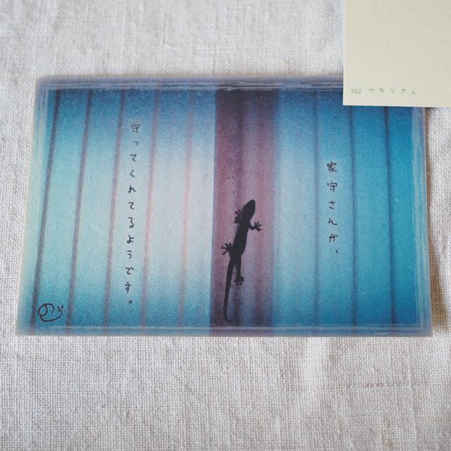 写真と言葉のポストカード/012ヤモリさん