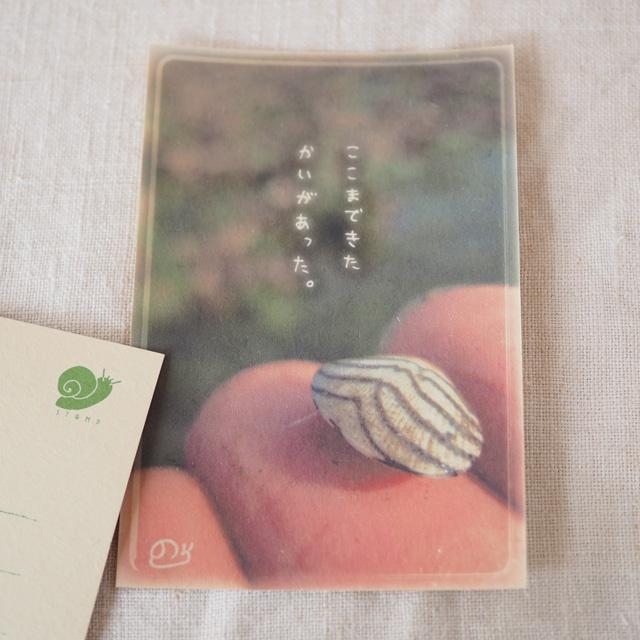 写真と言葉のポストカード/036転居